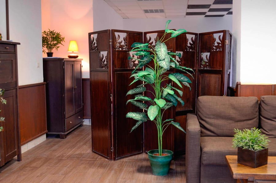 nos centres de m ditation et relaxation jyoti m ditation. Black Bedroom Furniture Sets. Home Design Ideas
